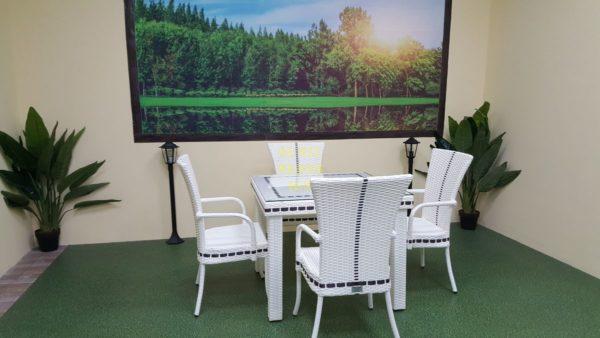 Фото-Aurora 4 Плетеная мебель