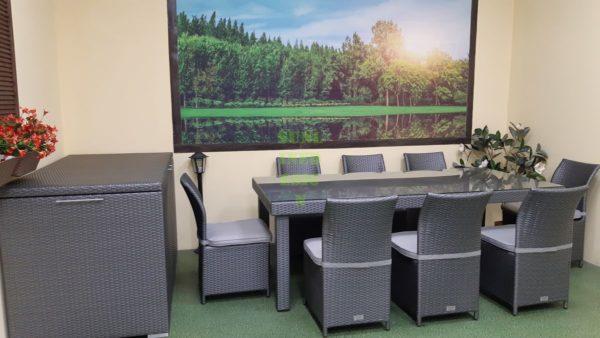 Фото-Louisiana grey dining Комплект мебели из искусственного ротанга